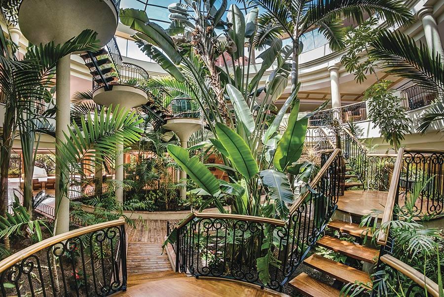 Book the Sheraton Fuerteventura Beach Golf & Spa Resort, Caleta de Fuste - Sunway.ie