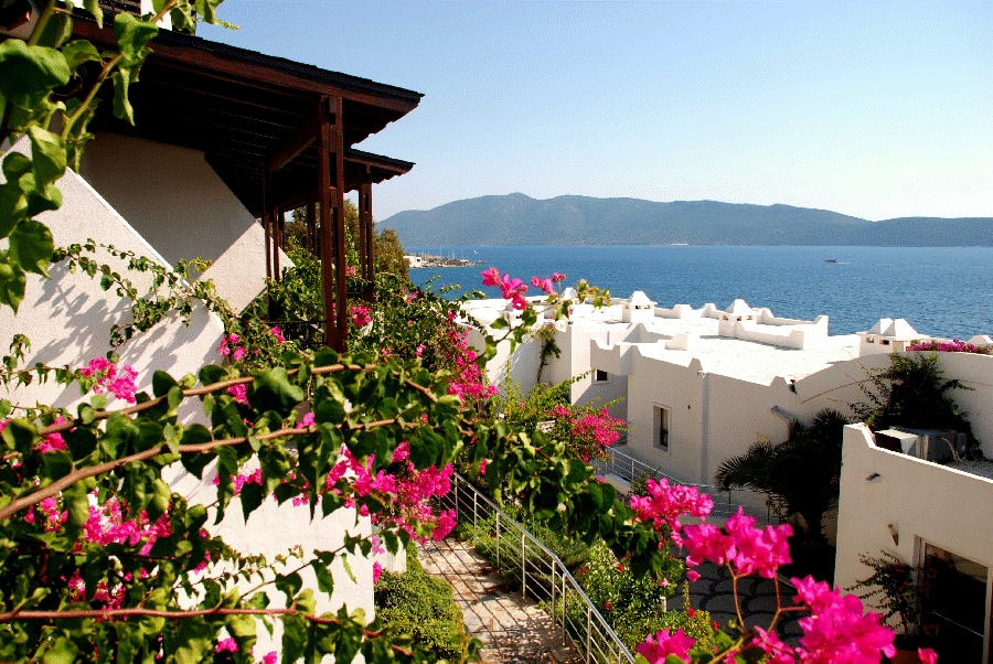 Book the Forever Club, Bodrum - Sunway.ie